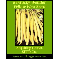 Pole Bean - Kentucky Wonder Yellow Wax