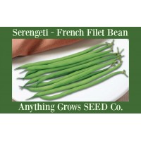 Bush Bean - Serengeti French Filet