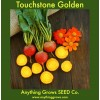 Beet - Touchstone Golden Beet
