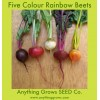 Beet - Five Colour Rainbow