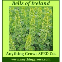 Bells of Ireland