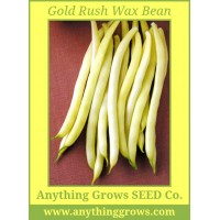 Bush Bean - Gold Rush Wax - Organic