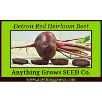 Beet - Detroit Red Heirloom - Organic