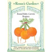 Carrot - Romeo