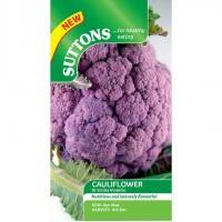 Cauliflower - Di Sicilia Violetta