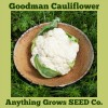 Cauliflower - Goodman - Organic
