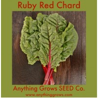 Swiss Chard - Ruby Red - Organic