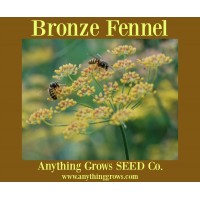 Herb - Fennel, Smokey Bronze