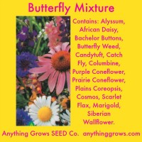 Flowers - Butterfly Mixture
