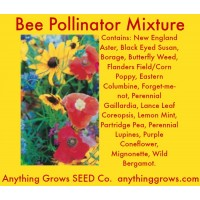 Flowers - Bee Pollinator Mixture