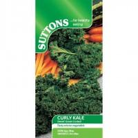Kale - Dwarf Green Curled