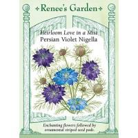 Nigella - Persian Violet, Nigella damascena