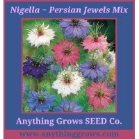 Nigella - Persian Jewels Mix, damascena