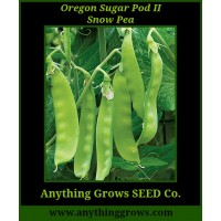 Pea - Oregon Sugar Pod II Snow - Organic