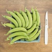 Pea - SS141 - Organic Sugar Snap