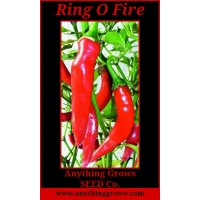 Pepper - HOT - Ring-O-Fire Cayenne - Organic