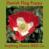 Poppy ~ Danish Flag
