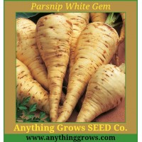Parsnip - White Gem