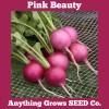 Radish - Pink Beauty - Organic