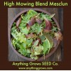 Lettuce - High Mowing Blend - Organic