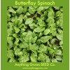 Spinach - Butterflay - Organic