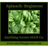 Spinach - Regiment - Organic