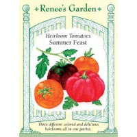 Tomato - Summer Feast Mix