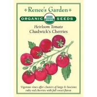 Tomato - Chadwick's Cherry - Organic