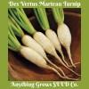 Turnip - Des Vertus Marteau - Organic