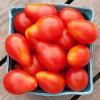 Tomato - Red Pear - Organic