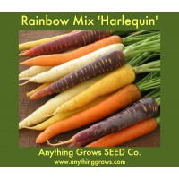 Carrot - Rainbow, Harlequin Mix