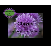 Herb - Chives - Organic