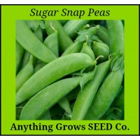 Pea - Sugar Snap