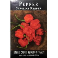 Pepper - hot - Carolina Reaper