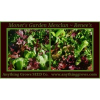 Lettuce Mix - Monet's Garden