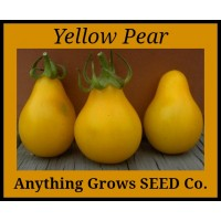 Tomato - Yellow Pear - Organic